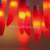 Chilli String Lights