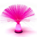 Pink Fibre Optic Lamp